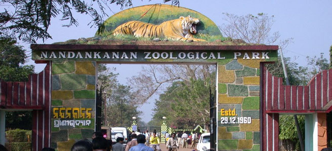 nandankanan-national-park